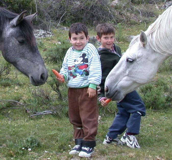 niños zanahorias y caballos
